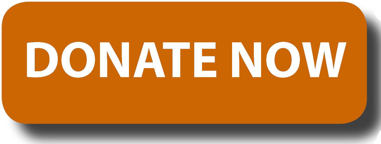 Regarding Susan Sontag Donations